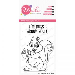 nuts about you design photopolymer stamp for crafts, arts and DIY by Mudra